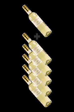 Wein----5+1 GRATIS Sommernachtstraum Cuveé
