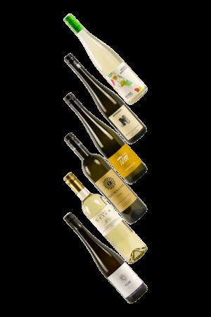 Wein----6 unter 60 Weißwein Probierpaket