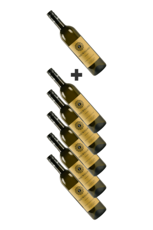 Wein-WeißweineAllgemein Weisswein---5+1 GRATIS Gelber Muskateller Vulkanland Steiermark DAC