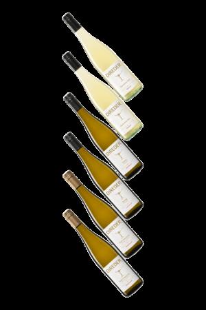 Wein--Skoff-Wagram-Direder Probierpaket