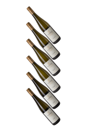 Wein--Haimerl-Kamptal-Haimerl Probierpaket
